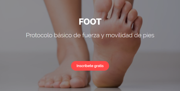 Header FOOT IG y blog